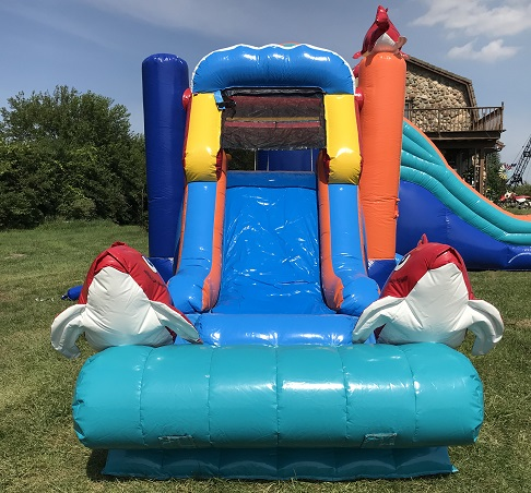 Water Slide Rental Plainfield IL